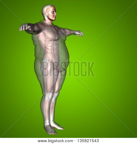 Concept 3D fat overweight vs slim fit diet with muscles young man green gradient background metaphor to sport, athlete, fitness, health, fit, sexy, strength, power, attractive, bodybuilding, gym, diet