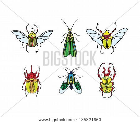 set of vector colored beetle icons for design