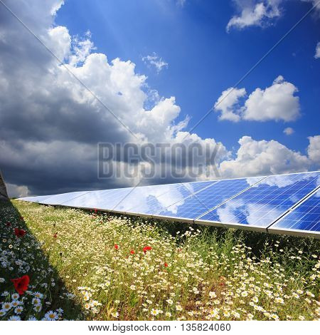 Solar panels with field of flowers under cloudy sky