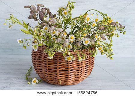 Meadow flowers in a wicker basket on a light wooden background.