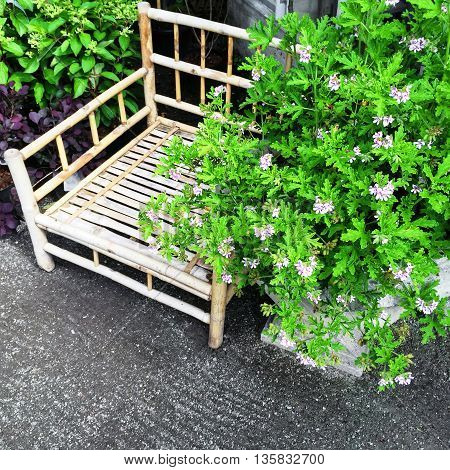 Summer garden with bamboo chair and blooming plants.