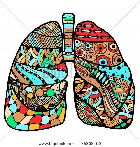 Colored Hand drawn sketched lungs in Zentangle style on white paper background. Vector illustration.