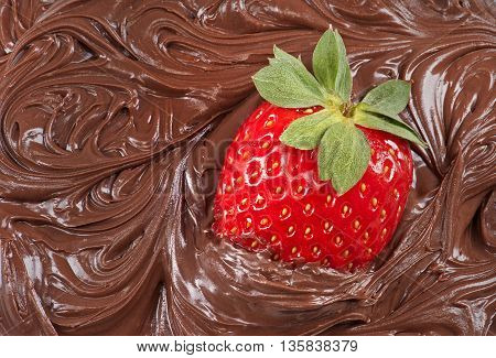 Close up Fresh juicy strawberry with molten chocolate