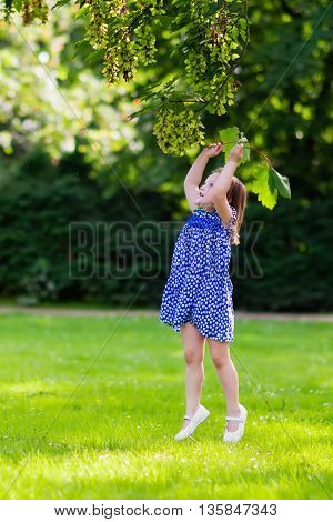Cute little girl playing in sunny summer park. Child picking maple leaves. Toddler kid running and jumping in a forest. Kids play outdoors. Children run. Preschooler in school yard on warm autumn day.