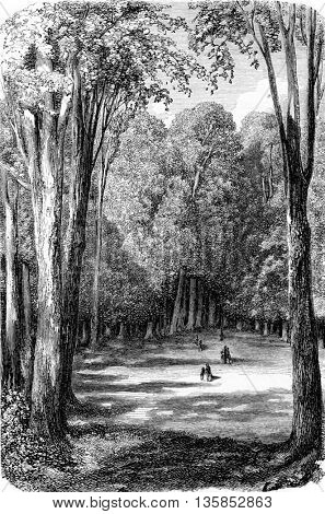 Karlsruhe Park in Karlsruhe, Baden-W�¼rttemberg, Germany. From Chemin des Ecoliers, vintage engraving, 1876.