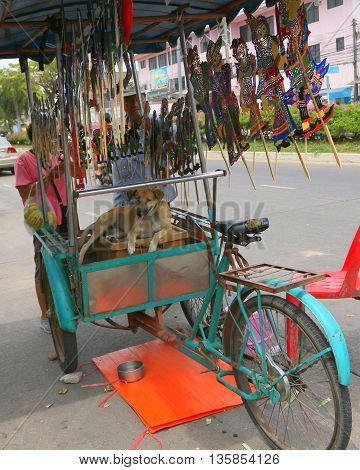 dog resting in bicycle sidecar vendor stall, selling traditional homemade leather shadow puppets, Songkhla, Thailand