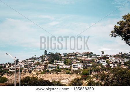 Trees And Buildings In Laguna Beach, California