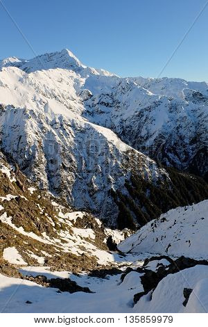 Mt Rolleston Viewed from Scotts Track on Avalanche Peak. Arthurs Pass, Southern Alps, Canterbury, New Zealand