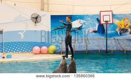 Belek, Turkey - October 04, 2014: Dolphins Show, Troy Dolphinarium. Two Bottlenose Dolphins