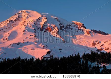 Pink Sunset on the High and Snowy Peak of Mt. Rainier.  Mt Rainier National Park, Washington