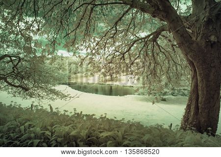 Stunning Infrared Alternative Color Landscape Image Of Trees Over River