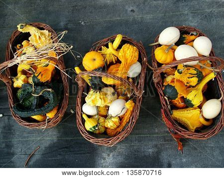 Baskets with decorative squashes and gourds on a grey background