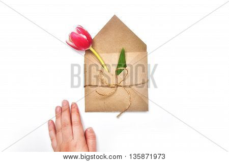 Flower in envelope on the white background. Tulip in craft envelope. Mail for you. Spring background. Gift fot her. Flat lay. View table. Minimalism Style. Female style. Flat lay.