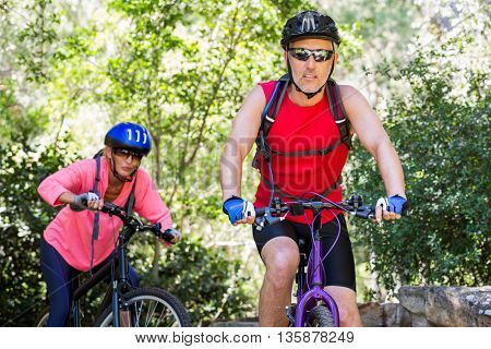 senior couple is doing bicycle in a forest