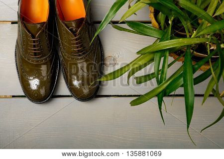 Green lacquered oxford shoes on wooden background near flower pot. Top view. Close up. Copy space