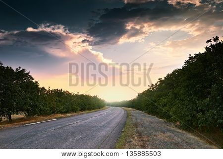 beautiful sunset on road, summer landscape