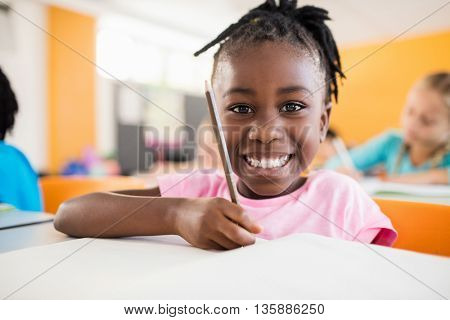 Smiling portrait of a pupil studying in classroom