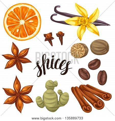 Various stylized spices set. Illustration of anise cloves vanilla ginger and cinnamon.