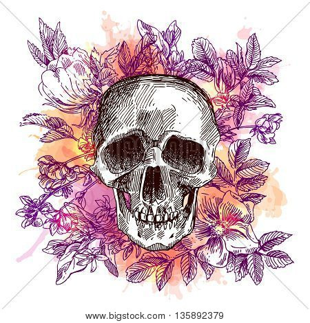 Beautiful hand drawn sketch illustration the skull and flowers. Boho style print for T-shirt. Watercolor background.