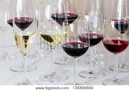 Many different glasses of wine on the table