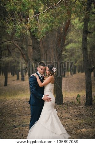 Romantic Bride and Groom Kissing and Embracing outdoors in forest. wedding kiss. Young newly married couple posing together