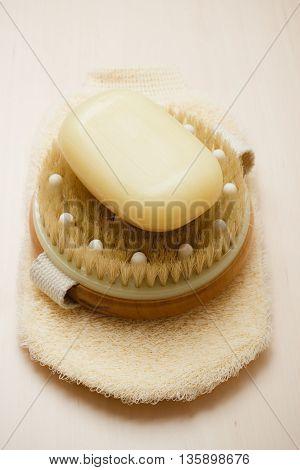 Body Brush Soap And Scrub Glove