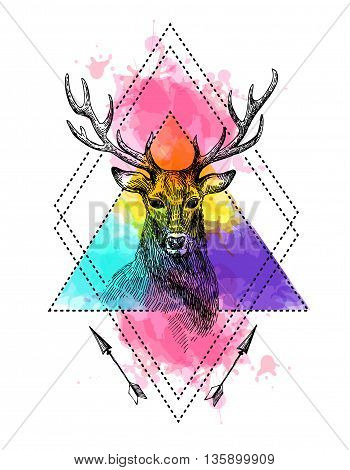 Hand drawn illustration deer. Sketch of deer. Tattoo style deer on the watercolor background.