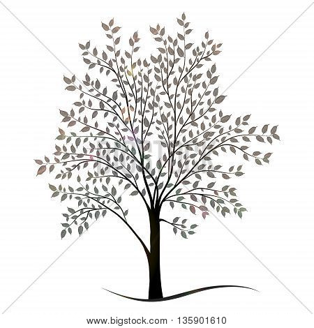 Tree with leaves silhouette vector on white background