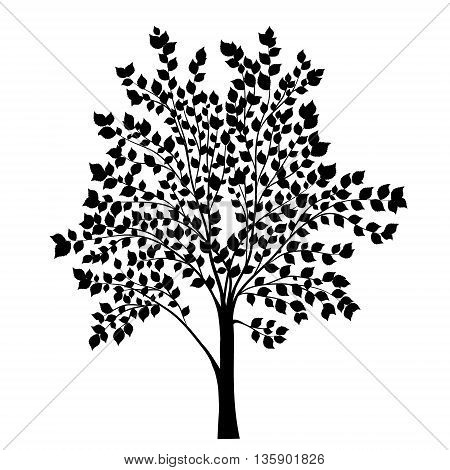 Tree with leaves silhouette vector on white