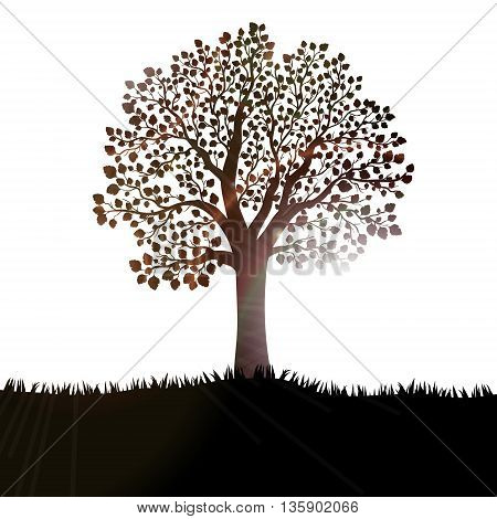 Silhouette of tree with leaves on hill vector