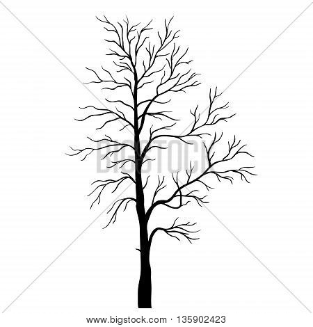 Tree silhouette vector on a white background