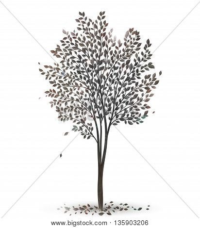 Tree with leaves silhouette on white vector