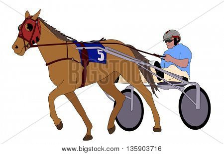 Trotter in harness illustration -  vector