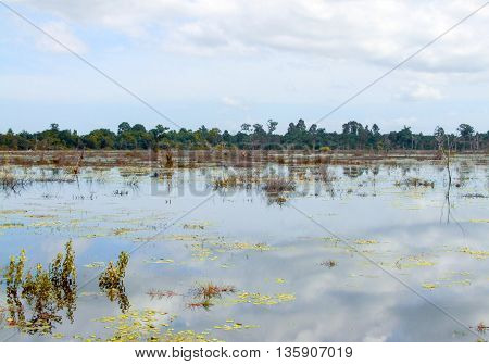 flooded scenery around Neak Pean at Angkor in Cambodia
