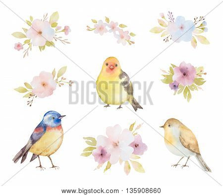 Watercolor set of birds, flowers and bouquets. Hand painted illustration on white background. Elements for design of congratulatory cards, invitations, business cards and more.