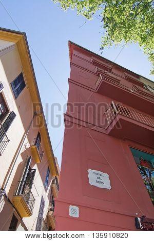Born Avenue Palma