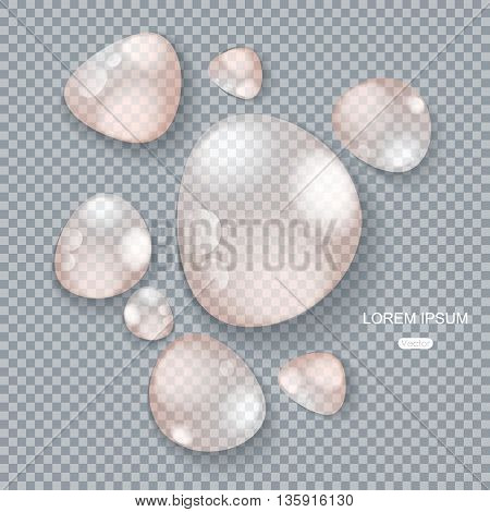Pure clear water drops on gray transparent background realistic set vector illustration.