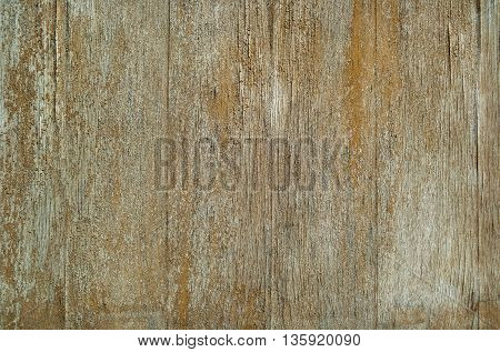 Wood plank texture with natural pattern. Closeup