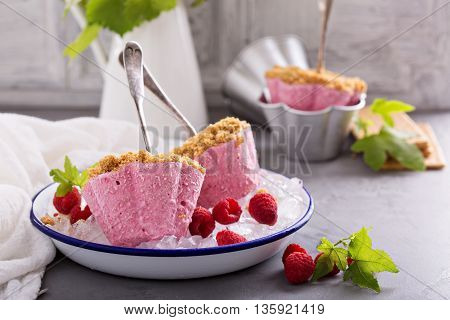 Raspberry cheesecake ice cream pops with cracker crumbs