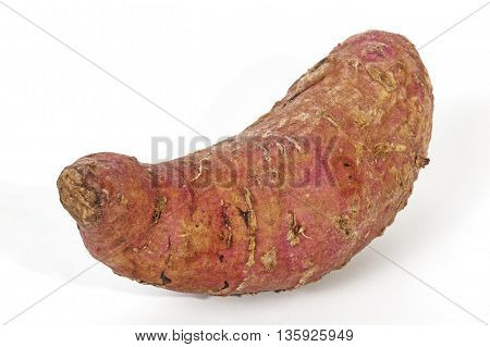 Single Healthy Sweet Potato With Rough Skin