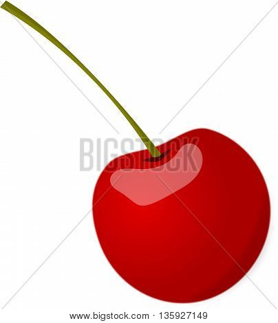 Red cherry with green stem vector drawing