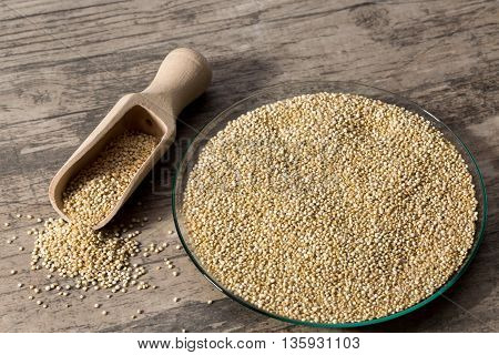 Quinoa in glass dish on wooden background with spice shovel front view closeup.