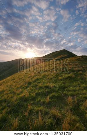 beautiful summer Carpathian landscape in Europe, Ukraine