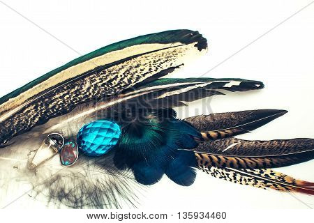 Bright feather with gems on white background