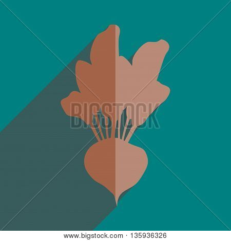 Flat icons with shadow of beet. Vector illustration