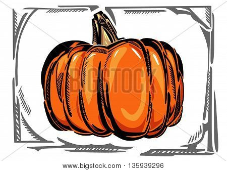 A stylized vector drawing of a pumpkin, in gray curvy frame.
