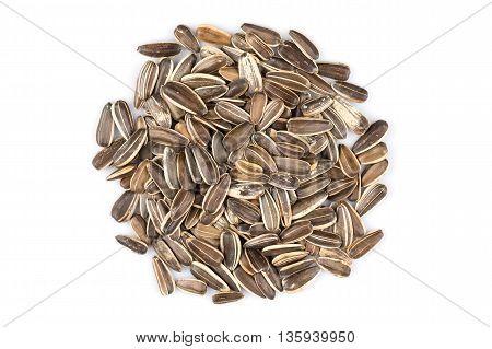 Sunflower Seeds Pile