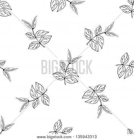 Vector seamless pattern with ink hand drawn herbs. Botanical background. Fabric design