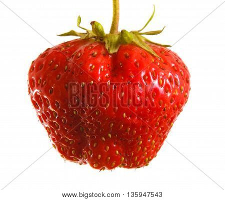 Ripe Strawberries On The Germ On A White Background