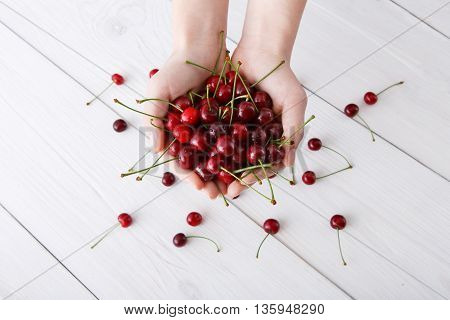 Handful of cherries closeup at white rustic wood background. Sweet fresh scattered fruits around. Healthy food in hands, top view